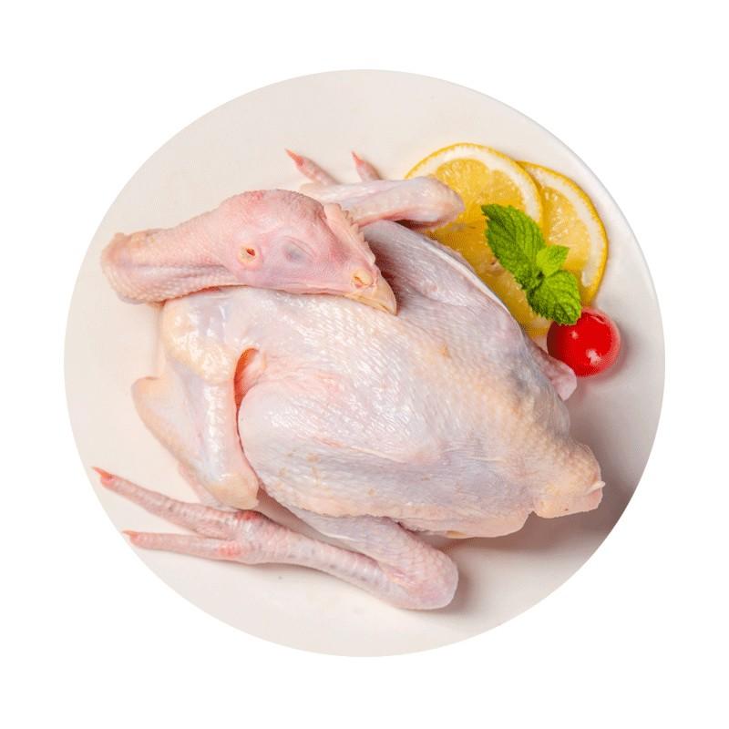 27日0点:草原宏达 散养草香鸡 500g 19.9元,可低至9.9元